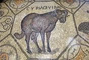 immagine di Cripta degli Scavi