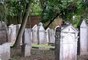 immagine di Antico cimitero ebraico