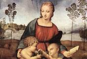 immagine di Madonna del cardellino