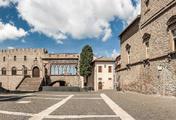 immagine di Palazzo dei Papi