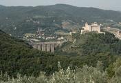 immagine di Rocca Albornoziana