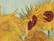immagine di Vaso con dodici girasoli (Sunflowers)