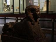 immagine di Sfinge della Regina Hatscepsut