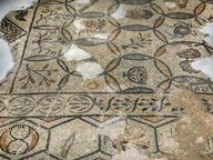 immagine di Episcopio