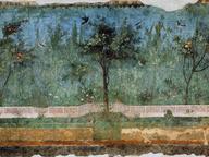 immagine di Affreschi Villa di Livia