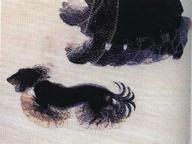 immagine di Dinamismo di un cane al guinzaglio