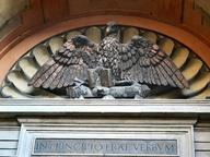 immagine di Aquila di San Giovanni