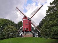 immagine di Nieuwe Papegaai Mill