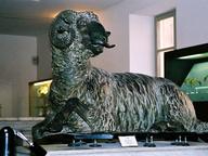 immagine di Ariete di bronzo di Siracusa