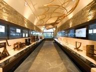 immagine di Museo Leonardiano di Vinci