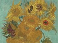 immagine di Girasoli (Sunflowers)