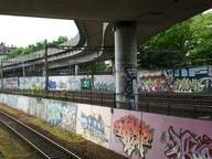 immagine di I graffiti della