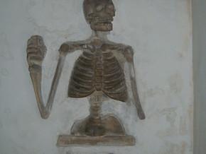 immagine di Cripta dei Teschi di Santa Maria dell'Orazione
