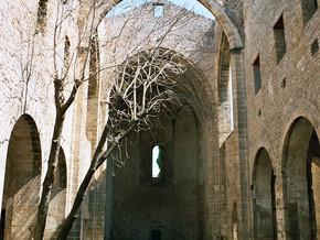 immagine di Chiesa di Santa Maria dello Spasimo