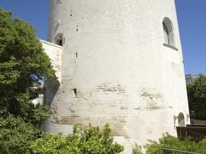 immagine di Torre del Parco