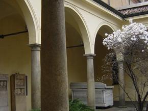 immagine di Civico Museo Archeologico