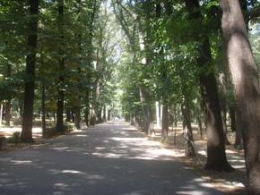immagine di Parco delle Cascine