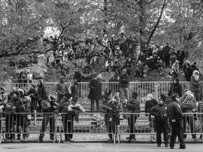 George Georgiou. Americans Parade