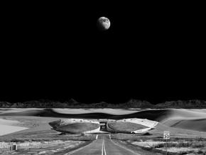 FUTURO | Arte e società dagli anni Sessanta a domani