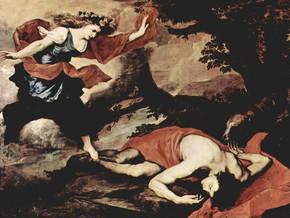 immagine di Venere e Adone