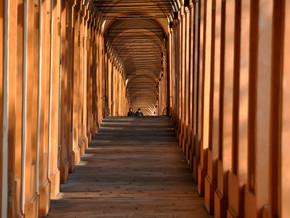 immagine di Portico San Luca