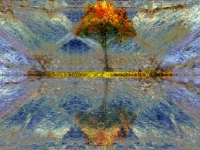 Vi.P. Gallery- Virgilio Patarini Arte Contemporanea