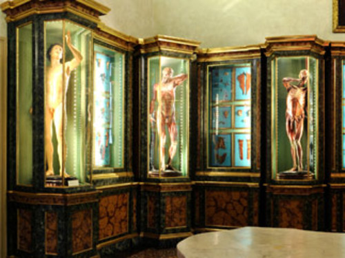 palazzo paleotti bologna indirizzo mail - photo#34