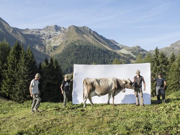 Marco Mazzoleni. Segni e Sogni d'Alpe