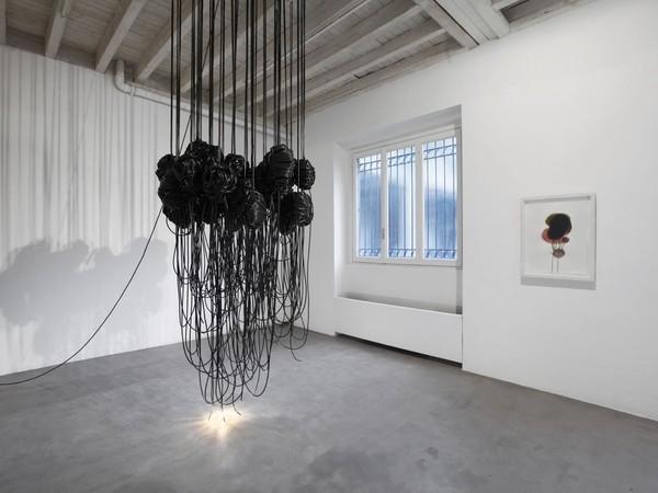 Paolo Grassino, Per sedurre gli insetti, 2015
