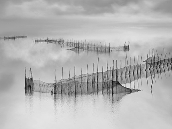 Franco Donaggio, REFLECTIONS