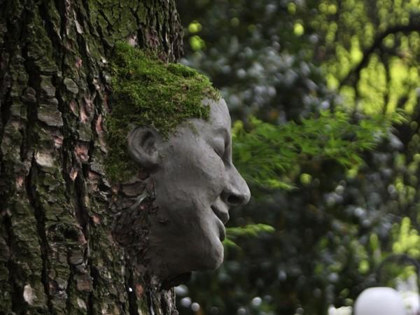 Elena Candeo, Scultura di fango su albero