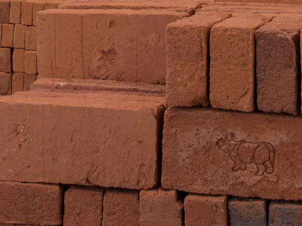Rossella Biscotti, Clara, installazione, mattoni fatti a mano, tabacco, adesivo prespaziato, 2016. Dettaglio dell'installazione, Van Abbemuseum, Eindhoven