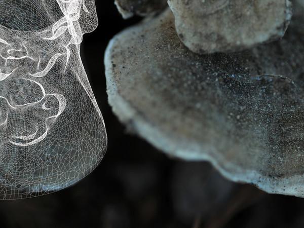 Progetto La Ceramica Parallela, rendering 3D, 2019
