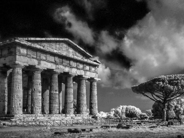 Marco Divitini, Particolare tempio di Nettuno