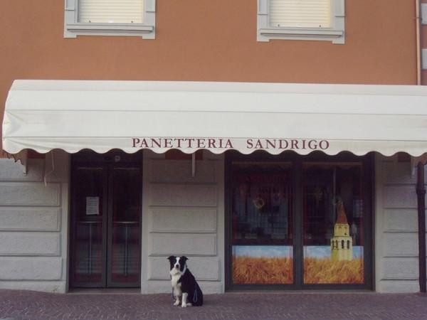 Panetteria Sandrigo