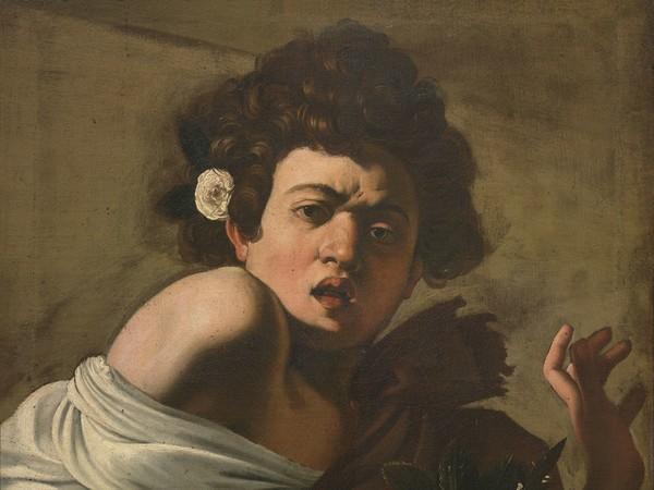 Caravaggio, Ragazzo Morso da un ramarro, 1595-96 ca. Olio su tela,&nbsp;cm. 65,8 x 52,3 (senza cornice).&nbsp;Firenze, Fondazione di Studi di Storia dell&rsquo;Arte Roberto Longhi<br />