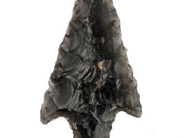 Cibi e strumenti dal Paleolitico in poi