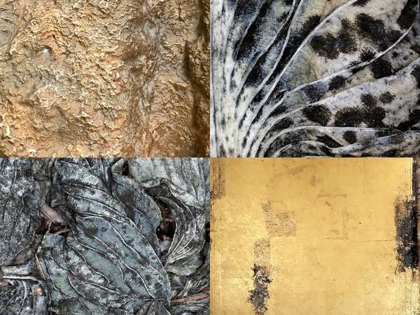 Inner Surface, Janine Von Thungen, Tadeusz Niescier, Antonello Viola
