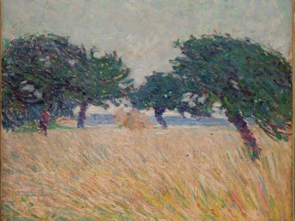 Umberto Boccioni, Paesaggio marino con alberi, 1908, olio su tela, cm 54,5x64,5, MAON, Rende