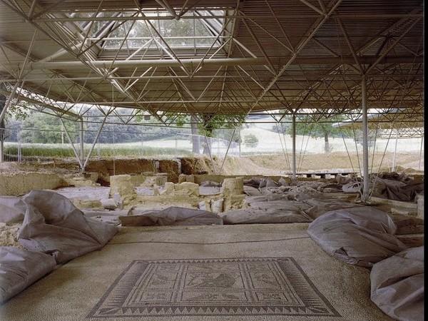 Domus dei Coiedii, Area archeologica romana di Suasa, Castelleone di Suasa