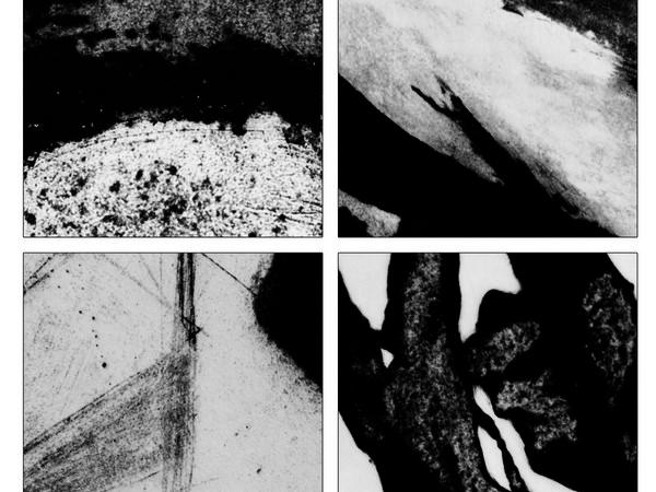 """Biennale Nazionale di Incisione 2013. VI Edizione, Spazio polivalente """"Corte Torcolo"""", Cavaion Veronese"""