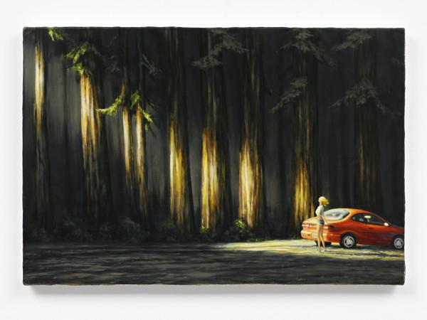 Dan Attoe, Cedars On The Back Road, 2013