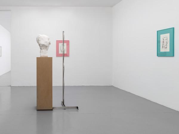 Armando Andrade Tudela | huesos de bambú, Galleria Massimo Minini, Brescia