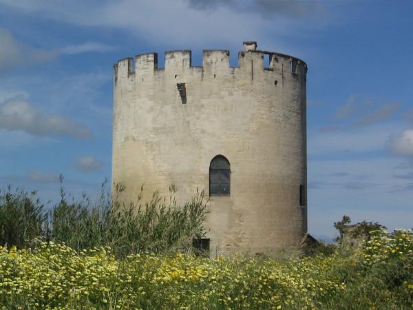 Torre di Belloluogo