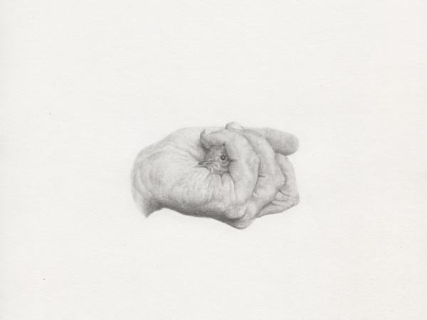 Giovanni De Lazzari, Senza Titolo, 37,5x33cm, pencil on paper, framed, 2012