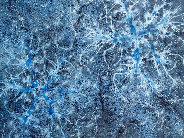 Alberto Di Fabio, Fotosfera, 2014, acrilico su tela, 150x150 cm.