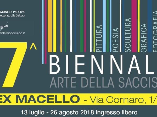 Biennale d'arte della Saccisica. XVII Edizione, Padova