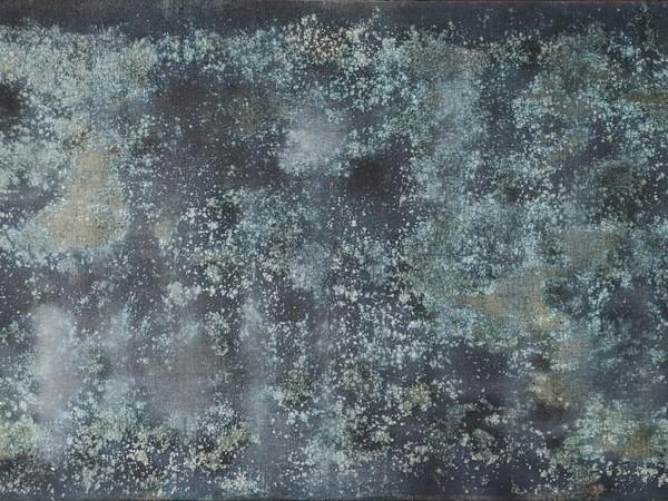 TTOZOI, Reggia #26, 2018, muffa naturale su tela, cm. 90X190