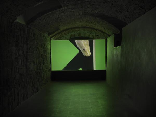 Luca Trevisani, Museo Marino Marini, Firenze