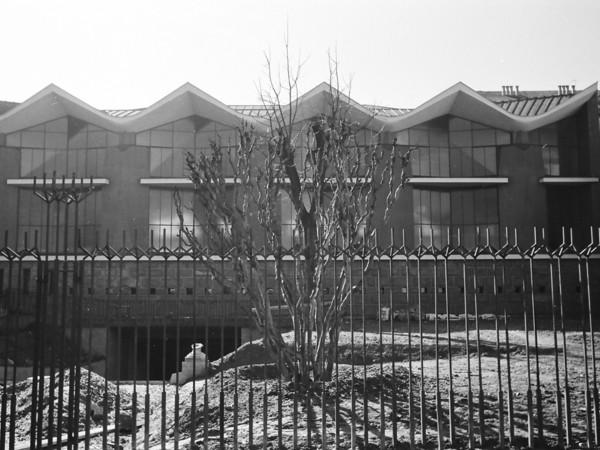 Roberto Gabetti, Torino. Palazzo della Borsa Valori, 1956